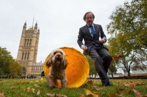 Hugo-Swire-MP